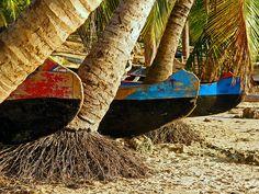 at Ifaty beach, Toliara, Madagascar   par Zé Eduardo...