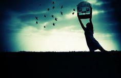 ara, artwork, bird, birdcage, birds, blue - inspiring picture on Favim.com