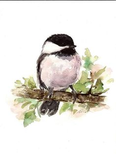 ORIGINAL Watercolor Chickadee Bird Art Painting by NuFineArt5