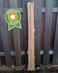"The ""Wood From the Hood"" Growth Chart is hyper-local & totally unique! Made in Minneapolis from locally-harvested reclaimed urban lumber,each growth chart is labeled with the zip code where it was harvested.Our selection often includes silver maple, elm, white pine,white oak,poplar,spruce,& linden.The Wood from the Hood Growth Chart is $41.99 and is one of our all-time favorite toys that we're featuring this holiday season.See our website for all our favorites!Peapods Natural Toyswww.peapods..."