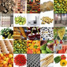 Web sitemize kayıt olun, Bremen'de oluşan Türk Ticaret Merkezinde (Turkish Trade Center) yerinizi alın ve ürünlerinizi/hizmetlerinizi tüm dünyaya tanıtma ve pazarlama imkanınız olsun. Ayrıntılı bilgi için bizimle irtibata geçiniz: www.multi-buyer.com