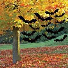 The Halloween Bats Decoration won't fly around your house? Here we share images cheap & easy to make Halloween bats decoration ideas. Spooky Halloween, Halloween Chat Noir, Halloween Bat Decorations, Feliz Halloween, Outdoor Halloween, Holidays Halloween, Yard Decorations, Skeleton Decorations, Halloween Displays