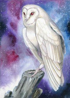 Galaxy Owl by Brenda Lyons windfalcon] Owl Watercolor, Watercolor Galaxy, Hahn Tattoo, Hexagon Tattoo, Living Treasures, Owl Artwork, Owl Illustration, Furry Wolf, Ghost Faces