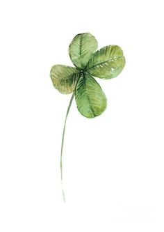 four-leaf-clover-watercolor-poster-joanna-szmerdt.jpg (565×799)