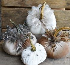 Excited to share this item from my shop: Velvet Pumpkin with Feathers, Velvet Pumpkin Champagne with Brown Feathers and Real Stem Velvet Pumpkins, Fabric Pumpkins, White Pumpkins, Painted Pumpkins, Fall Pumpkins, Pumpkin Wine, Pumpkin Art, Pumpkin Pumpkin, White Pumpkin Decor