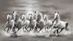7 Horse walpaper B&W Black and white horses wallpaper Horse Wallpaper, Painting Wallpaper, Animal Wallpaper, Wall Wallpaper, Seven Horses Painting, Horse Canvas Painting, Horse Pencil Drawing, 3d Art Drawing, Beautiful Photos Of Nature