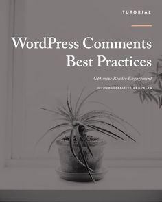 How To Manage and Maintain Your WordPress Comments, wordpress tutorials, wordpress tips