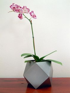 25 modern ideas for flower pots and planters