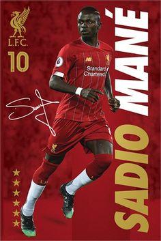 Liverpool Players, Liverpool Fans, Liverpool Football Club, Ynwa Liverpool, Liverpool Fc Wallpaper, Liverpool Wallpapers, Liverpool Champions, Champions League, Sports