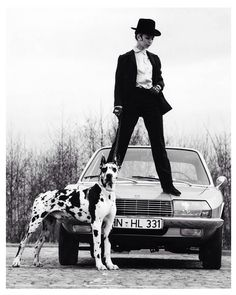 "Our Dane Dame of the week is a ""Go-Go Girl"" perched a top a 1968 Audi, with Great Dane in tow!"