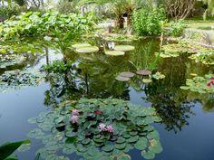 Get on board for a Mediterranean garden cruise: http://blog.hgtvgardens.com/green-envy-a-mediterranean-garden-tour-cruise/