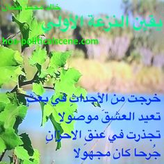 """Snippet of poetry from """"Certainty of First Tendency"""", by poet & journalist Khalid Mohammed Osman on the Dinder and Rahad forest, Sudan."""