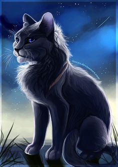 Bluestar by LLoryZ on DeviantArt