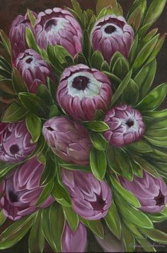 Ice protea heads Oil on canvas  60xm x 90cm Fine art prints available vonbrughan@gmail.com  Original commissions available as well.  Melissa Von Brughan Floral Paintings, Painting Flowers, Protea Art, Pin Cushions, Oil On Canvas, Cool Art, Butterflies, Decoupage, Ice
