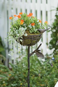 Bird Nest Planter
