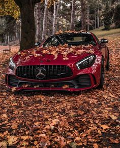 11 Sport car 4 door - You might be in the marketplace for one of the 4 door sports cars listed here. Audi Sportback, Tesla Model S, Mercedes-Benz Luxury Sports Cars, Top Luxury Cars, Sport Cars, Carros Mercedes Benz, Mercedes Benz Maybach, Benz Amg, Amg C63, Carros Audi, Carros Lamborghini