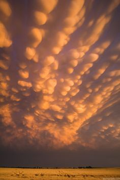 Storm chaser Mike Hollingshead from Nebraska has captured incredible photos of 'bubble clouds' in the sky (shown). Known as mammatus clouds the structures form behind storms. All Nature, Amazing Nature, Science Nature, Beautiful Sky, Beautiful World, Beautiful Scenery, Tornados, Mother Earth, Nature