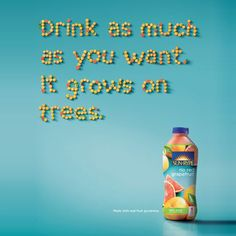 drink as much as you want. it grows on trees