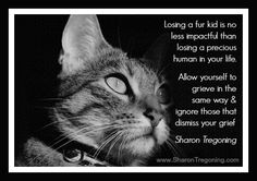 Losing a fur kid is no less impactful than losing a precious human in your life.  Allow yourself to grieve in the same way & ignore those that dismiss your grief.  Sharon Tregoning  www.SharonTregoning.com