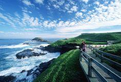 The Nobbies - Rugged Phillip Island Coastline