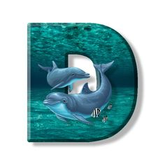 Buchstabe - Letter D Home Learning, Dolphins, Initials, Lettering, Illustration, Outdoor Decor, Backgrounds, Scrapbooking, Monogram