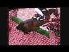 """Stadium jumping taken to the extreme. Puissance is an event in which horse and rider attempt to clear a course of huge fences, featuring a giant wall. Hence, the name """"puissance."""" The incredible power a horse must generate to clear such an obstacle brings audiences to their feet."""
