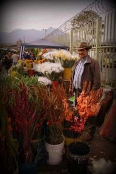 Traditional Market, Native Country, Open Market, Country Landscaping, World Market, How To Speak Spanish, Beautiful Places To Visit, Culture Travel, Rue