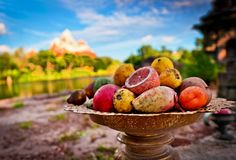 """Yeti Food"" http://di.sn/t0G  photographer: Tom Bricker location: Expedition Everest #DisneyAnimalKingdom #ExpeditionEverist"