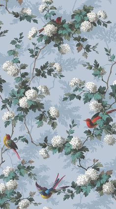 Heritage Bird Print by The Vintage Collection - Blue - Wallpaper : Wallpaper Direct