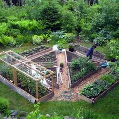 Love This Design Too For Raised Beds Nice Garden Layout. Podcast Details On  Minute List His Mineral Link And What To Do With Your Soil To Produce  Better ...