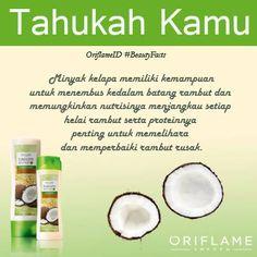 Manfaatkan minyak kelapa untuk memperbaiki rambutmu yang rusak, simak tipsnya disini.