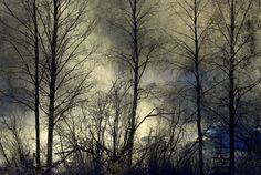 'Winter morning and misty rapids.' by irio Sunrise, Cold, Landscape, Abstract, Winter, Artwork, Summary, Winter Time, Work Of Art