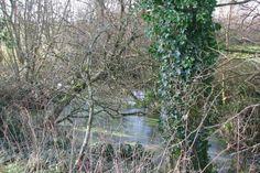 Land for sale in Wiverton, Wiverton, Plympton, Plymouth, Devon PL7 - 32725689