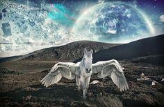 Pegasus por 35 Elissandro