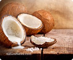 Can coconut oil help Alzheimer patients? One of the most healing foods in nature. The Ketone bodies from it's fatty acids are metabolized by the liver & can be a perfect source of fuel for the brain. A brain w Alzheimer's,doesn't use glucose for fuel as it once did. Ketones help to provide a different source of fuel for the brain to use.