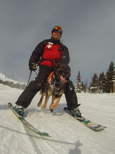 Ranger and Steve, our Avalanche Rescue Dog team. They received full validation with CARDA this season.