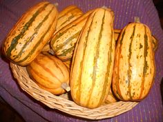Winter Squash, Honeyboat Delicata Organic Vegetable Seeds, Green Stripes, Squash, Cucumber, Zucchini, Fruit, Vegetables, Winter, Sweet