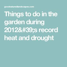 Things to do in the garden during 2012's record heat and drought