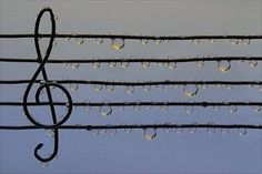 When you listen to the rain, remember, all of the sounds have been tightly scripted