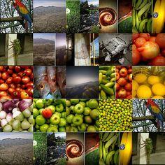 collage about ECUADOR