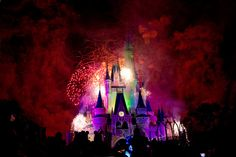 Happiest Place on Earth ♥ ∞