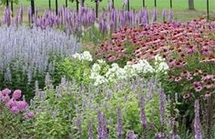 Butterfly Garden - This site has tons of ideas for butterly gardens.
