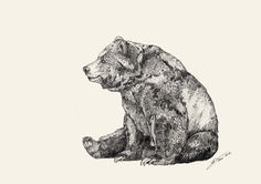 Bear // Graphite Art Print