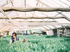 Tulpen in Hülle und Fülle - wir können uns nichts Schöneres vorstellen. #tulips #tulpen #selbstgezogen #madewithlove #flowerpower #plantlife #plantbased #greenlife #freshgreens #freshflowers #blumendoll #kunstgärtnereidoll #bypiaclodi 21st, Instagram Posts, Tulips, Nice Asses