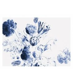 Fotobehang Royal Blue Flowers 2 Amsterdam, Royal Blue Flowers, Moose Art, Blue And White, Prints, Animals, Home Decor, Products, Photos