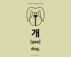 In today's Korean Word of The Day, we will learn how to say dog in Korean. For this, you use the word 'gae' (in Hangul: 개). If you want to say puppy, say gangaji (강아지)