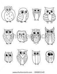 Resultado de imagem para owl birds