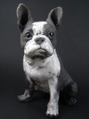 Boston Terrier by Ronnie Gould
