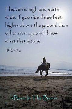 equestrian quotes   horse quotes