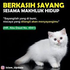 """Media Dakwah di Instagram """". Ketahuilah sahabat, bahwa sesungguhnya Allah menyayangi hamba-hambaNya yang penyayang. . Agama islam mengajarkan kasih sayang, bukan…"""" Allah Quotes, Muslim Quotes, Islamic Quotes, New Reminder, Reminder Quotes, Alhamdulillah, Hadith, Cat Quotes, Book Quotes"""